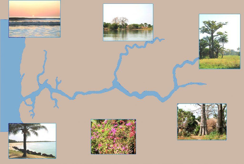 fleuve-casamance_fdbeige